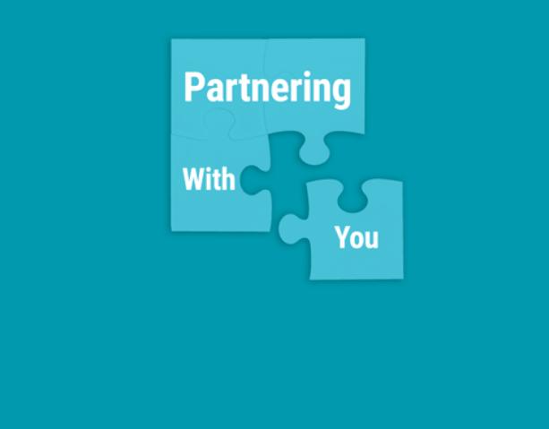 Dynamics 365 Partners